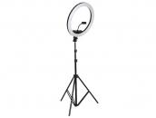 Кольцевая лампа 33 см + штатив 2 метра | Ring Light