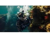 Magenta Dive Filter (for Dive + Wrist Housing)   Светофильтр пурпурного цвета для экшн-камер GoPro Hero3